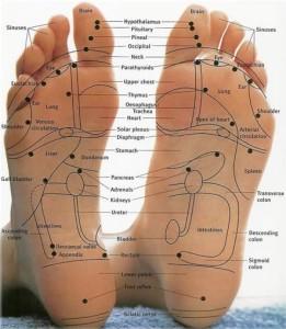Reflexology-Foot-Chart-102