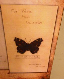 for vera